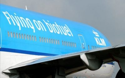 Greenwashing: Court Ruled Against Airline KLM